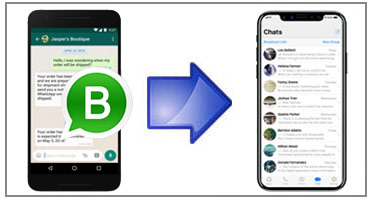 How to Transfer WhatsApp Business Messages from Android to iPhone -  IPhonetoPC